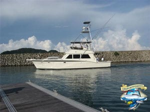 50' Hattaras Fishing Charters
