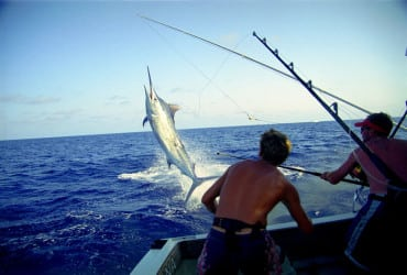 marlin-air-time-costa-rica