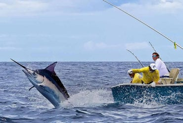 Image result for costa rica fishing