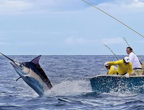 How to Plan the Perfect Costa Rica Fishing Trip