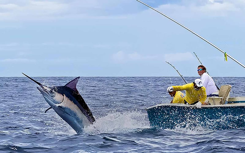 Image result for fishing trip
